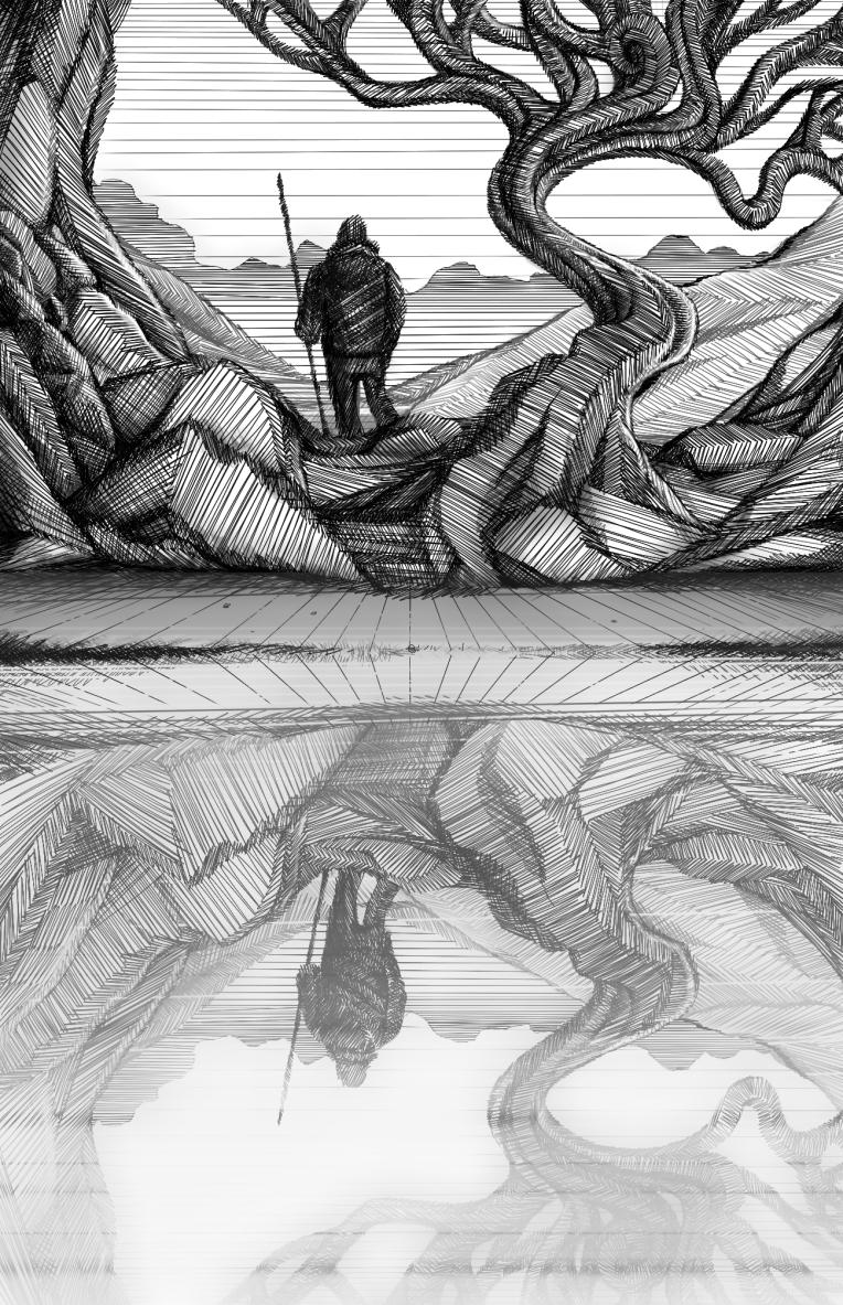 Reflection solo